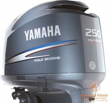 silnik-zaburtowy-yamaha-fl250detx